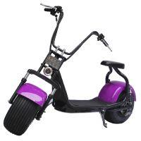 小哈雷车电池组 摩托车电池 48V/11Ah 塞夫电动车电池 两轮代步车