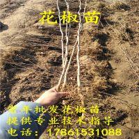 http://himg.china.cn/1/4_667_236570_800_800.jpg