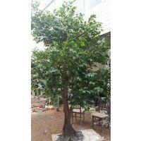 榕树-西安榕树|西安仿真榕树|西安榕树价格-金森造景榕树制作厂家