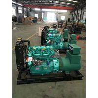 潍柴里卡多30kw小型水冷柴油发电机组 真空滚揉机专用全铜发电机
