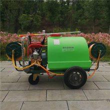 志成厂家直销300L手推式汽油打药机 果园高压远程喷雾机 多用途四轮消毒机