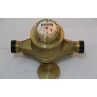 LS系列旋转活塞流量计、广东容积式流量计、福建发电机油表 润乾