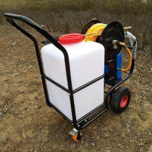 生产直销苗圃专用喷雾器养殖静音消毒机手推小型打药车