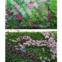 塑料植物墙|塑料绿植墙|仿真植物墙厂家-西安金森造景