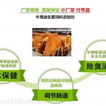 反刍动物肠道有益菌有什么