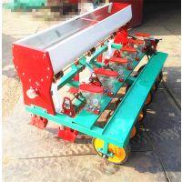 新型6行汽油精播机 双行汽油播种机 辣椒大包菜播种机