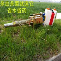 小型农用喷雾器打药机 多功能灭虫打药弥雾机