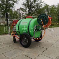 厂家直销汽油高压喷雾器大棚蔬菜杀虫打药机畜牧养殖消毒机