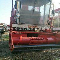 大型牧草青储机厂家 新型自走式秸秆青储机图片
