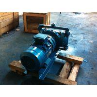 南昌隔膜泵DBY-40 工程塑料F46膜片DBY-50 化工泵