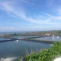 现货0.4mm新国标hdpe鱼塘土工膜 山东泥鳅养殖池塘防渗膜 厂家定制