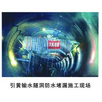 承接水利隧洞防水堵漏工程