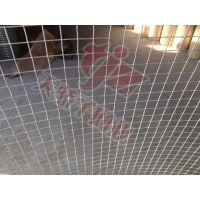 安平县天骄子销售电焊网养鸭场用网