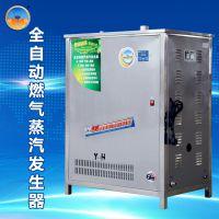 银鹤不锈钢304燃气锅炉蒸汽炉发生器节能型全自动蒸汽发生器80型蒸馒头环保设备