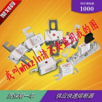 供应熔断器 保险丝 快速熔断体 熔芯 低压熔断器