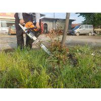 山地取苗挖树机图片 杨树杏树移栽挖树机 润众