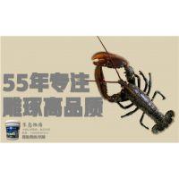 养虾池漆 台湾南宝