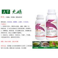 柑橘红蜘蛛茄子茶黄螨专用杀虫剂阿维螺螨酯悬浮剂正打反死渗透性强