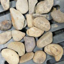 广东鹅卵石 铺路石 3-20公分鹅卵石 英德石 广东白色石 自然杂色石
