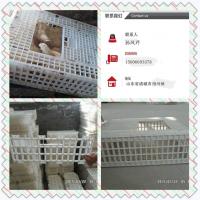 鸡鸭专用运输笼 塑料鸡鸭鹅笼子厂家