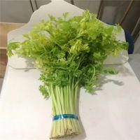 框架大 自动蔬菜捆扎机价格 韭菜香菜扎把机 捆菜机设备 鲁强机械