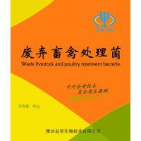 供应益昊生物病死猪无害化处理发酵菌