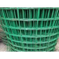 镀锌电焊网、浸塑荷兰网、养殖护栏网、隔离网、多种规格丝径可选,现货供应