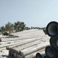 山东12米230mm非预应力水泥电线杆
