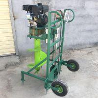 硬土耐磨钻孔机价格 富兴批发4.8马力汽油挖坑机
