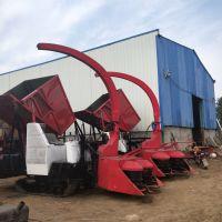 二手底盘改装履带式玉米秸秆青贮机 青草切碎收集机厂家
