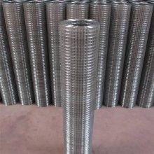 不锈钢电焊网 工艺专用电焊网 抹墙网规格