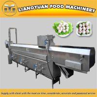 丸子生产机器肉丸成型水煮线设备山东梁源专业生产