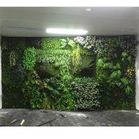 仿真绿植墙怎么样? 深圳绿琴直销 仿真植物墙 商业软装塑料假植物 电视背景墙装饰