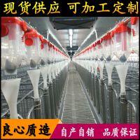 节约人工饲料成本 猪场完美自动化养猪料线价格 猪用料线厂家