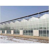 山东智能玻璃温室/玻璃温室/智能玻璃温室造价
