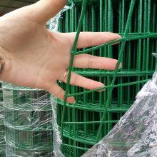 浸塑荷兰网 球场围栏网 绿色波浪铁丝网 量大从优