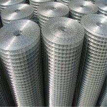 电焊网型号 镀锌电焊网价格 圈地铁丝网