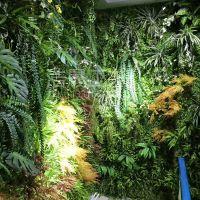 绿叶深林制造恐怖气氛仿真植物 企石浩晟专业设计定制仿真植物