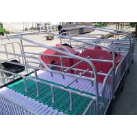 最新母猪产床价格