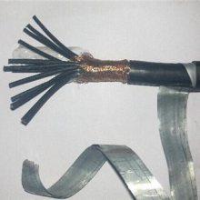 安徽长峰【国标品质】CKV82/DA 聚氯乙烯绝缘铜丝屏蔽聚氯乙烯外套船用控制电缆DA型