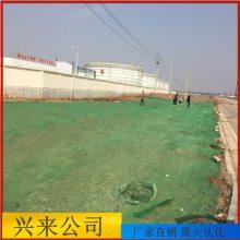 温州工程防尘网 盖土网现货 天津防尘盖土网厂家