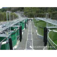 厂家直接订制工厂化养殖循环水养殖系统,10T~1000T
