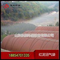 沼气储存袋养殖场设备-沼气发酵