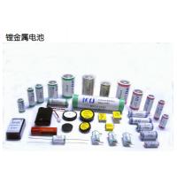 提供大电池金属电池至欧美专线双清派送服骢