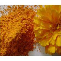 长期供应 叶黄素 食品级叶黄素 质量保证 1kg起批
