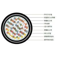 上海特润供应BS5308 PE绝缘+总屏蔽+铠装+PVC护套