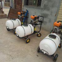 农用高压农药喷雾机 小型园林机械 佳鑫农用电动高压喷雾器
