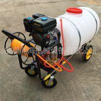 澜海热销 电动手推喷雾器 汽油式高压喷雾器