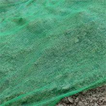 工地盖土网 抑制尘土飞扬绿网 盖土遮阳网