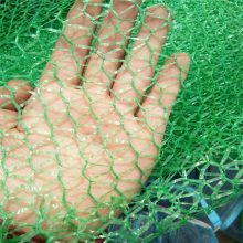 1.5针绿色盖土网 环保盖土防尘网 安全密目网